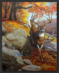 autumn whitetail-01