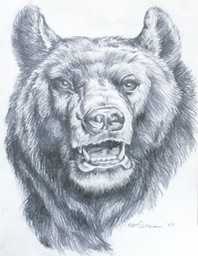 grizzlybearpencil